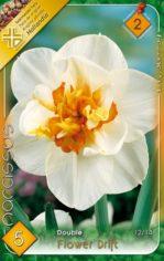 Flower_Drift___N_541ab54b08add