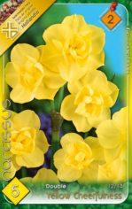 Yellow_Cheerfuln_541ab5955cfa8