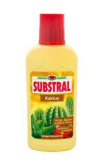 Substral_kaktusz_51ffcf2e83b89