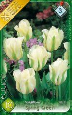 Spring_Green_Tul_541a9a18ec166
